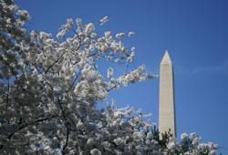 Washington DC for meeting room