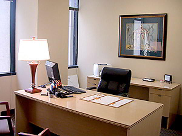 Century City Day Office - Fully Equipped