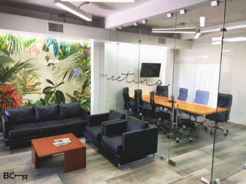 Stylish Chihuahua Meeting Room