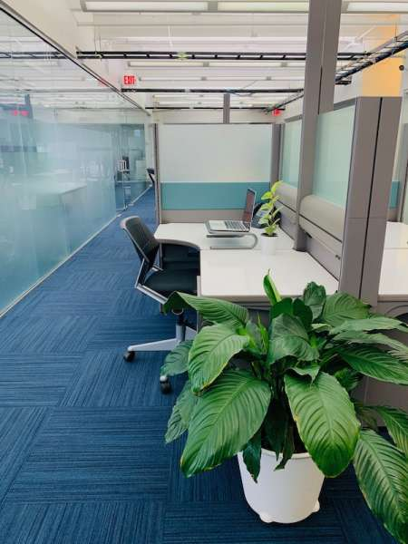 Virtual Offices Miami Beach  - Temp Offices or Meeting Room