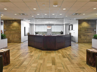 Receptionist and Mail Area - Schaumburg Virtual Office