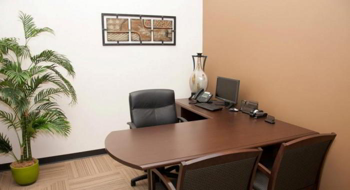 Temporary Alpharetta Office - Meeting Room