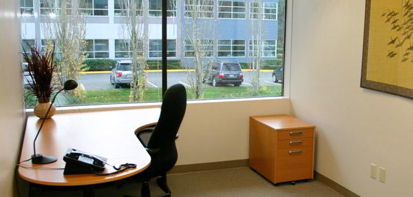 Temporary Issaquah Office - Meeting Room