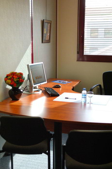 Temporary Lyon Office - Meeting Room