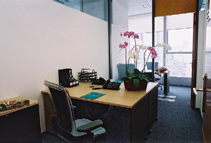 Ready To Go Virtual Office Space Shanghai