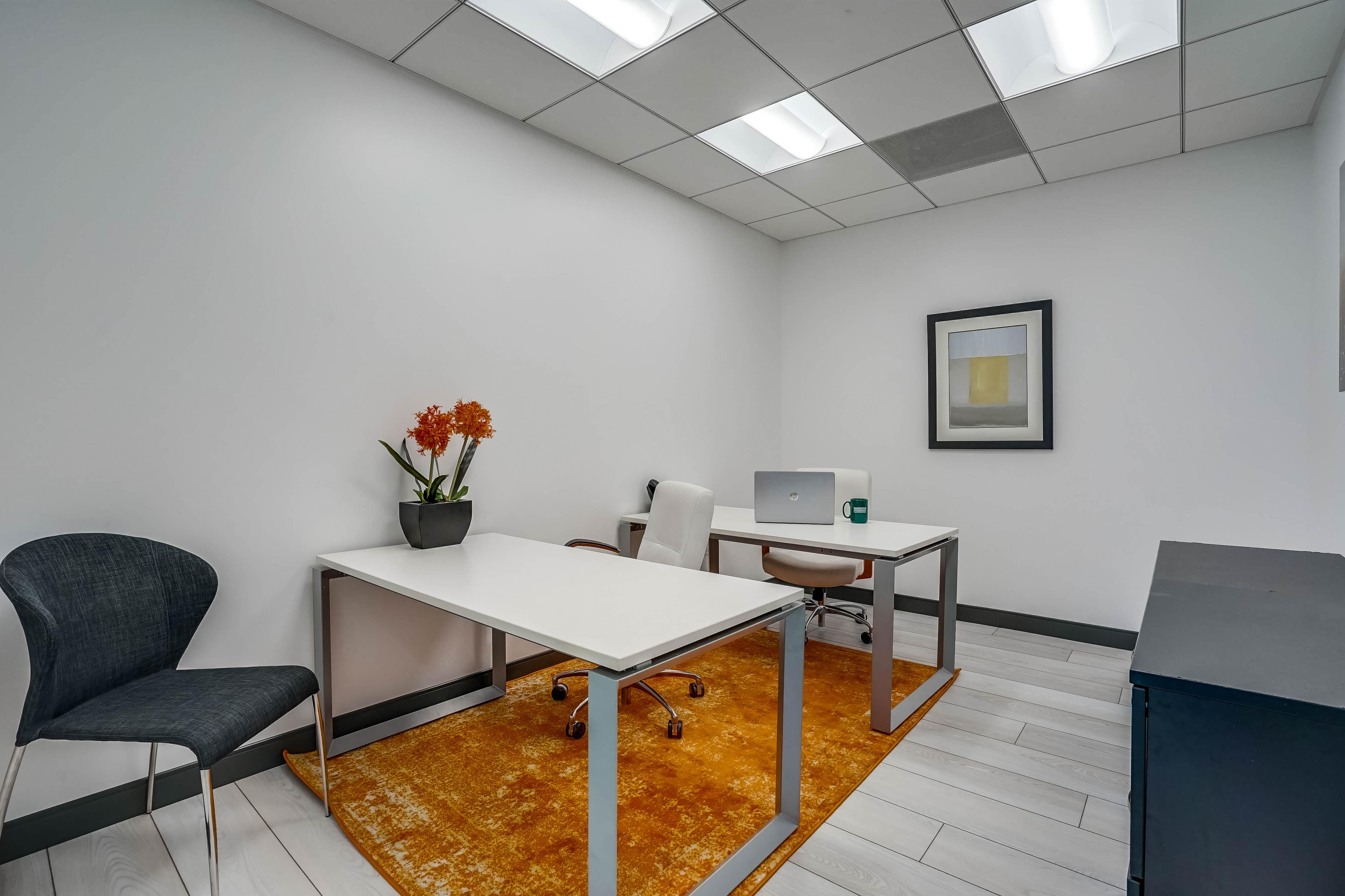 Temporary Beverly Hills Office - Meeting Room